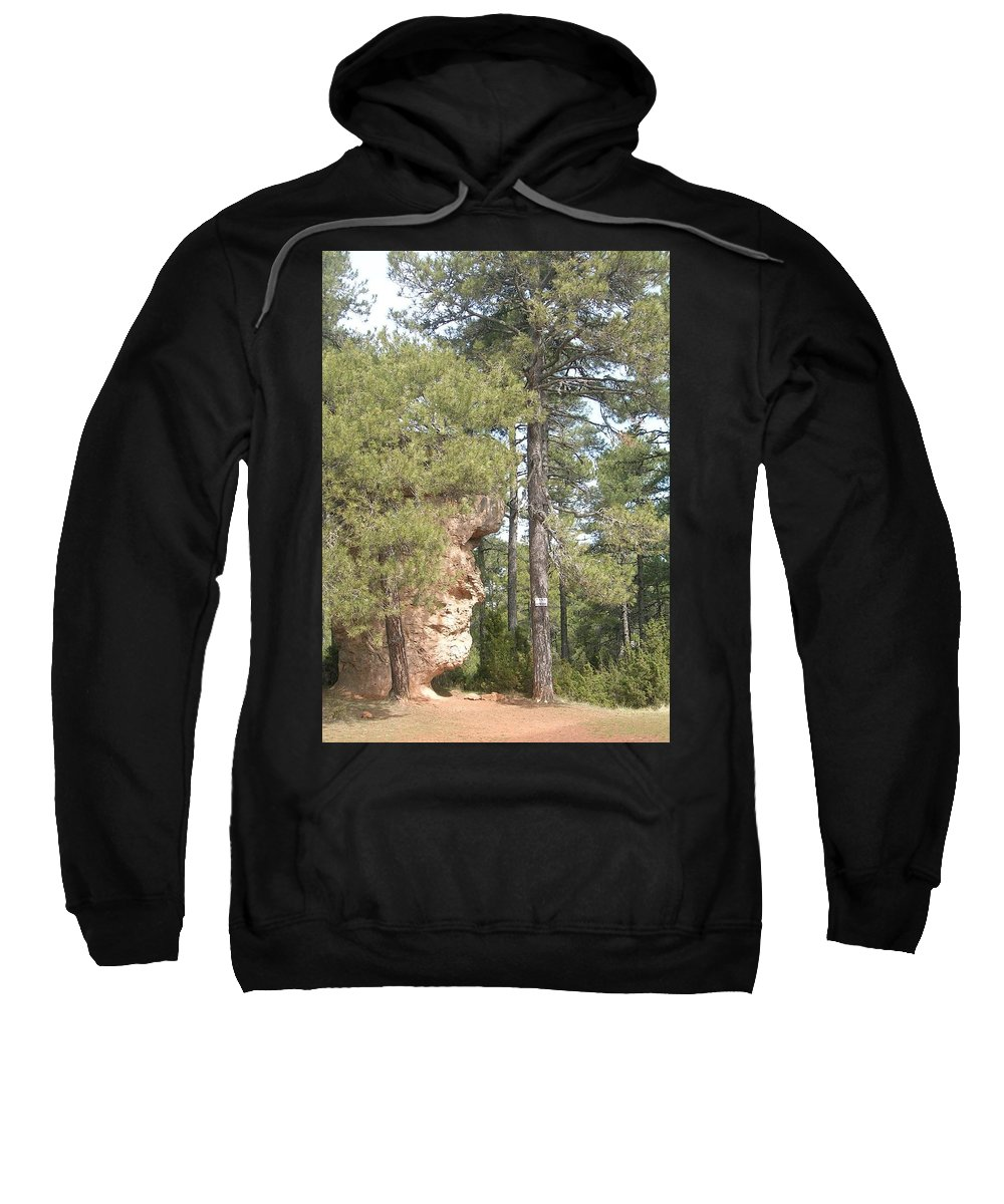 Landscape Sweatshirt featuring the photograph Forest Face by Valerie Ornstein