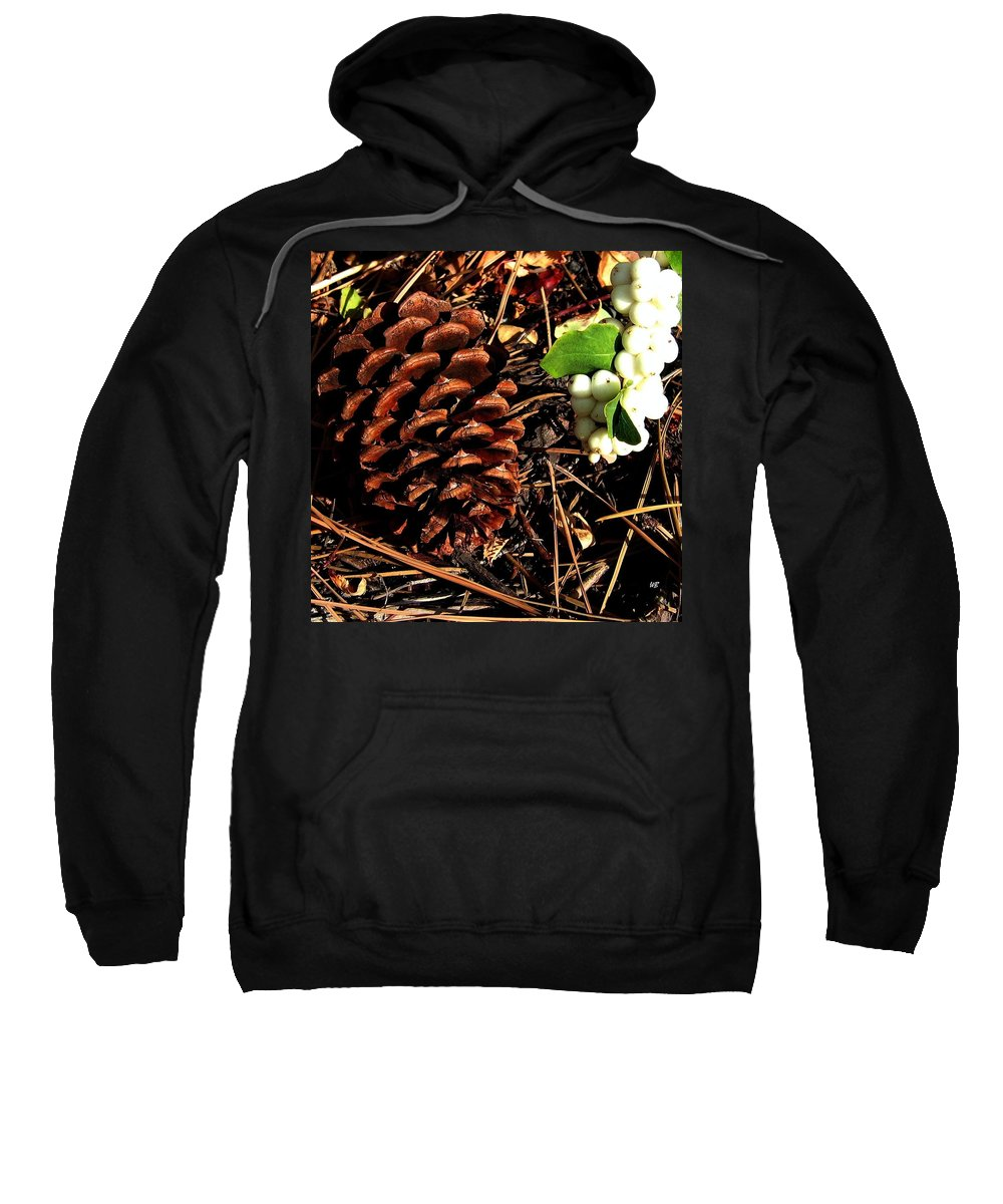 Forest Floor Sweatshirt featuring the photograph Forest Floor by Will Borden