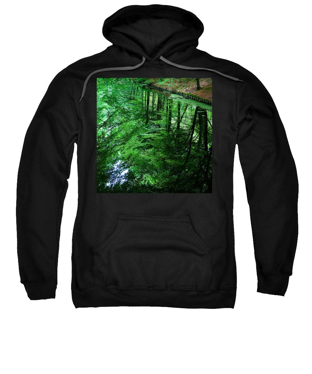 Forest Sweatshirt featuring the photograph Forest Reflection by Dave Bowman