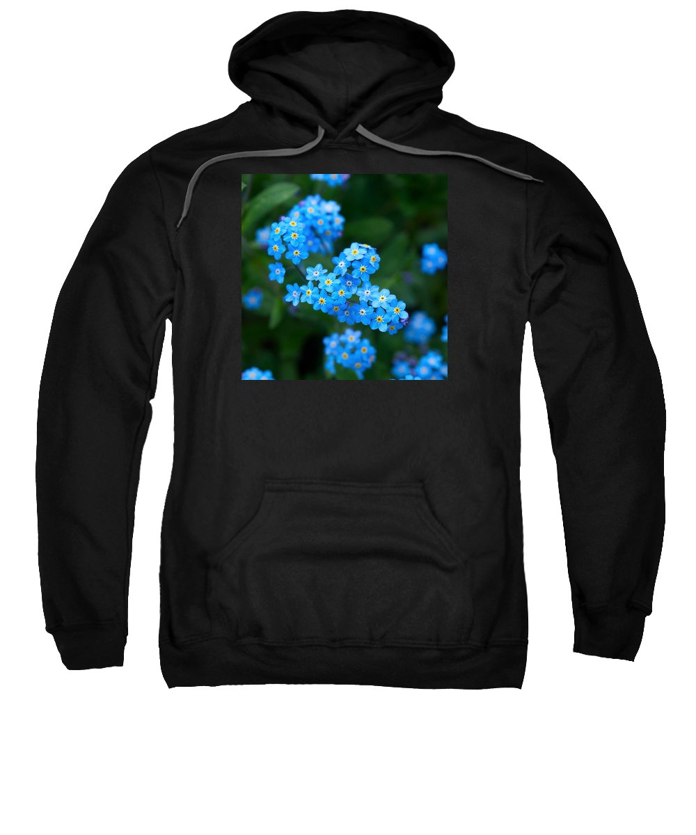 Lehtokukka Sweatshirt featuring the photograph Forget -me-not 5 by Jouko Lehto