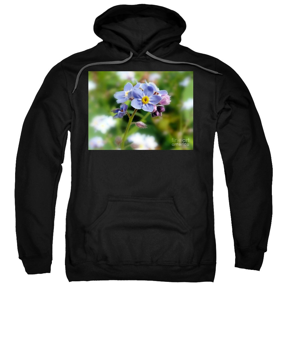 Forget-me-not Flower Sweatshirt featuring the pyrography Forget-me-not by Morag Bates