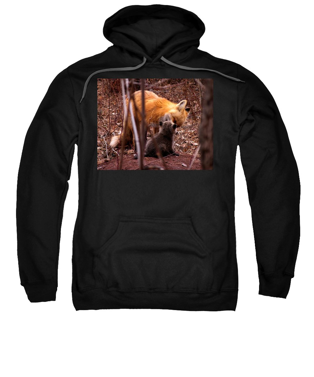 Fox Sweatshirt featuring the photograph Fox by Carol Milisen