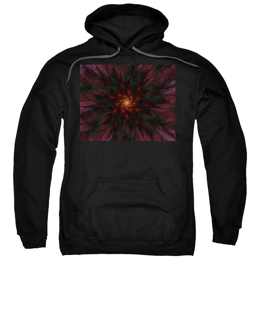 Digital Painting Sweatshirt featuring the digital art Fractal Floral Fantasy 02-13-10-b by David Lane