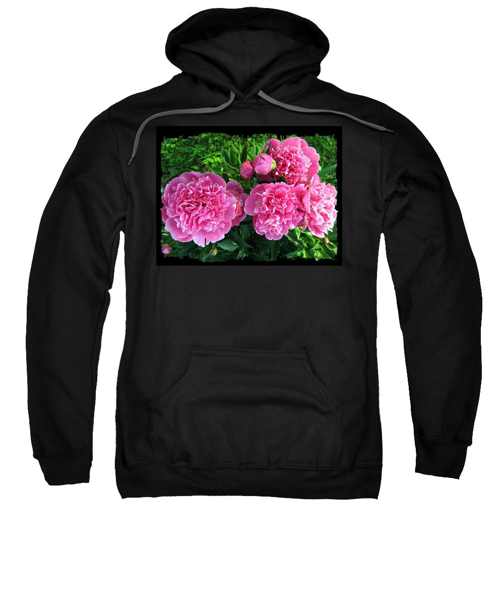 #fragrantpinkpeonies Sweatshirt featuring the photograph Fragrant Pink Peonies by Will Borden