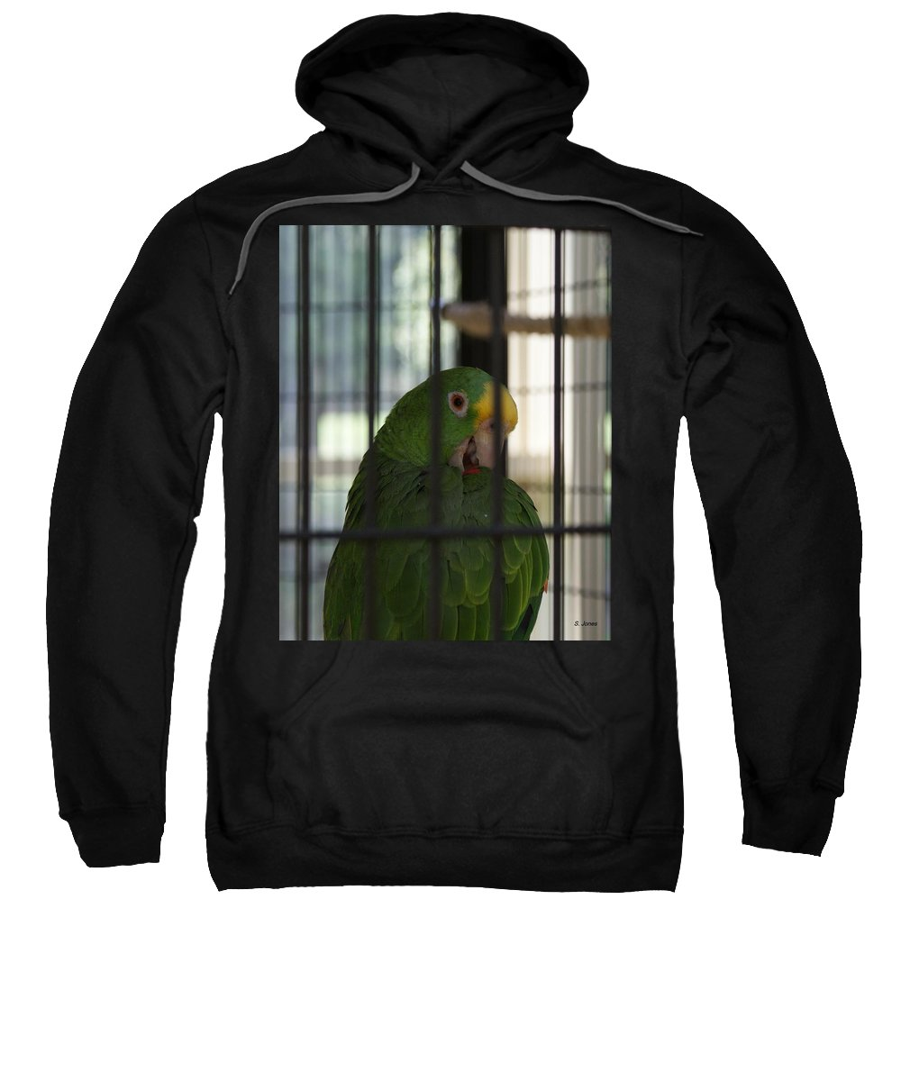 Parrot Sweatshirt featuring the photograph Framed by Shelley Jones