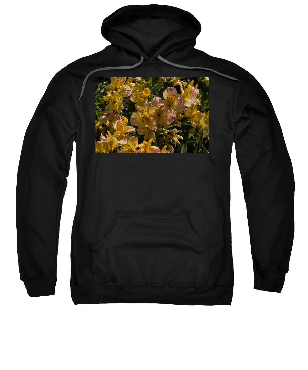 Flower Sweatshirt featuring the photograph Friendship Yellow Alstroemeira by Louise Heusinkveld