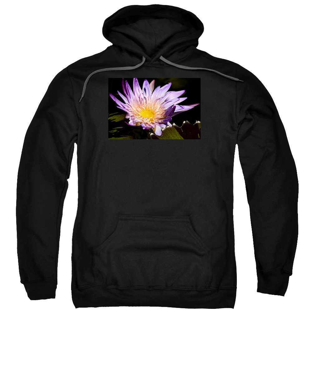 Purple Sweatshirt featuring the photograph Frilly Lilly by Teresa Mucha