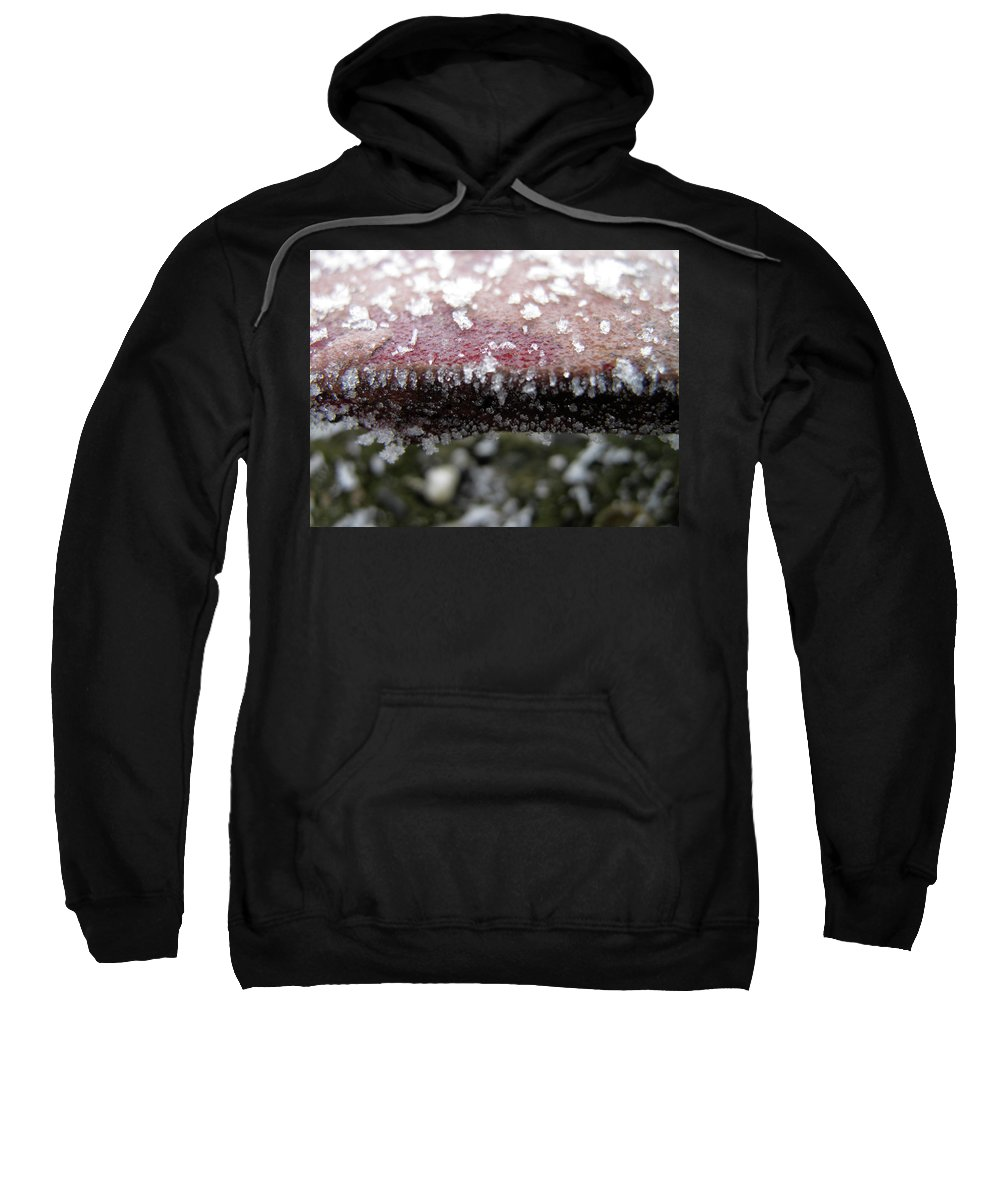 Winter Sweatshirt featuring the photograph Frost by Stefania Levi