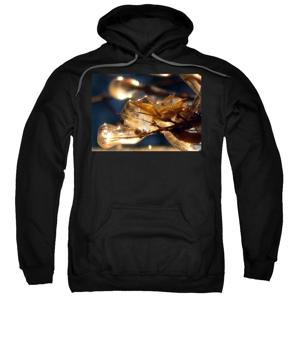 Photography Sweatshirt featuring the photograph Frozen Fairy by Dawn Marshall