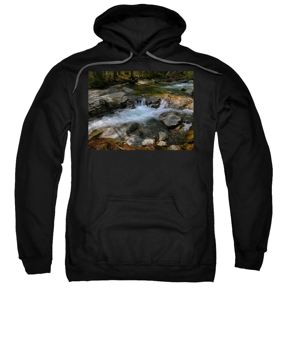 New Hampshire Sweatshirt featuring the photograph Full Body by Nancie DeMellia