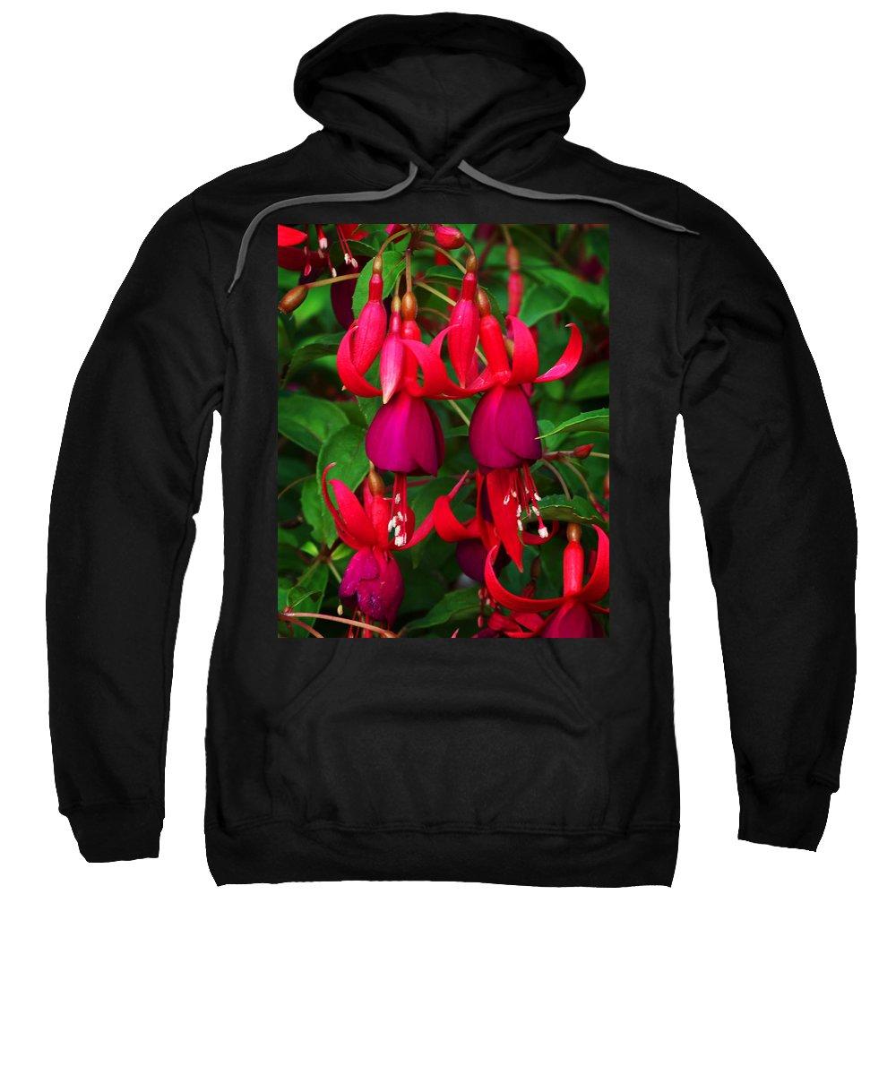 Flowers Sweatshirt featuring the photograph Fuschia Heron by Anthony Jones