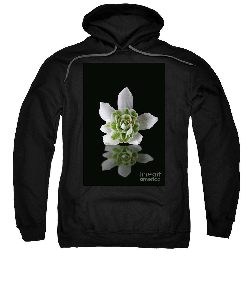 Galanthus Nivalis Sweatshirt featuring the photograph Galanthus Nivalis Flore Pleno by John Edwards