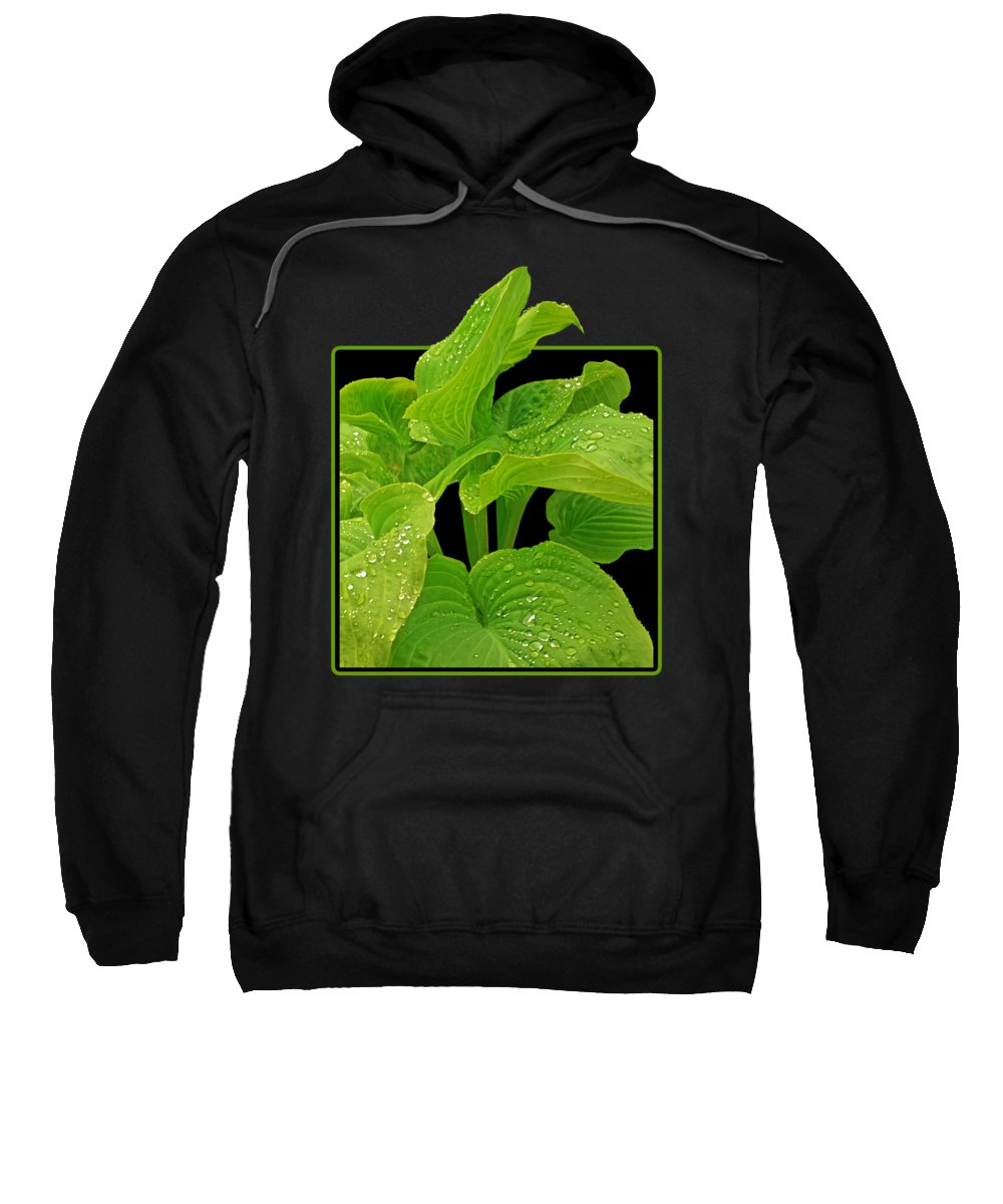 Beauty In Nature Hooded Sweatshirts T-Shirts