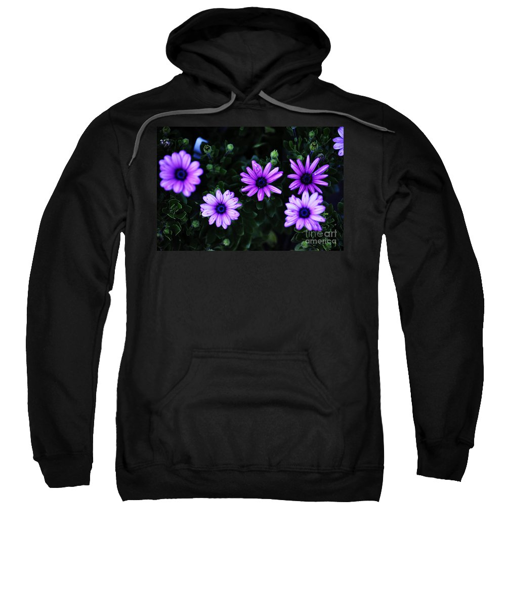 Clay Sweatshirt featuring the photograph Gears by Clayton Bruster