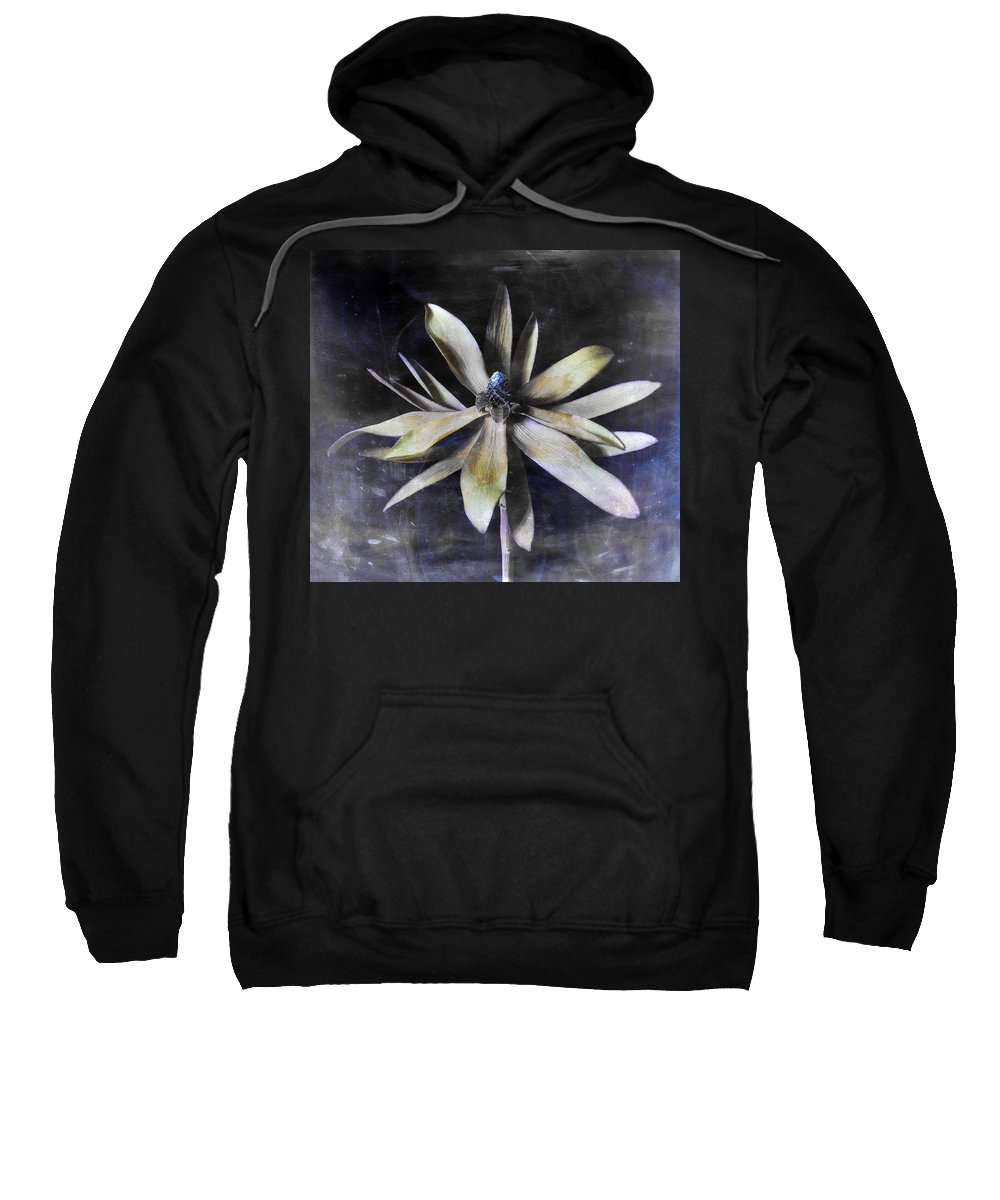Flora Sweatshirt featuring the photograph Genus Protea by Wayne Sherriff