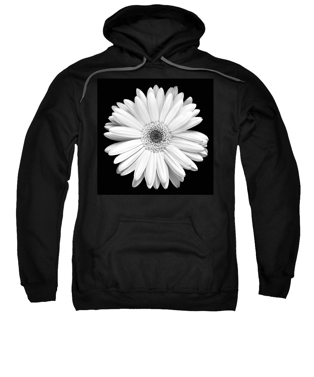 Gerber Sweatshirt featuring the photograph Single Gerbera Daisy by Marilyn Hunt