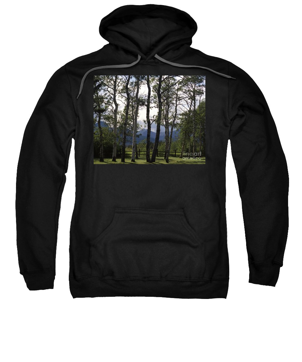Sweatshirt featuring the photograph Glacier National Park Green Trees Mountains by Heather Kirk