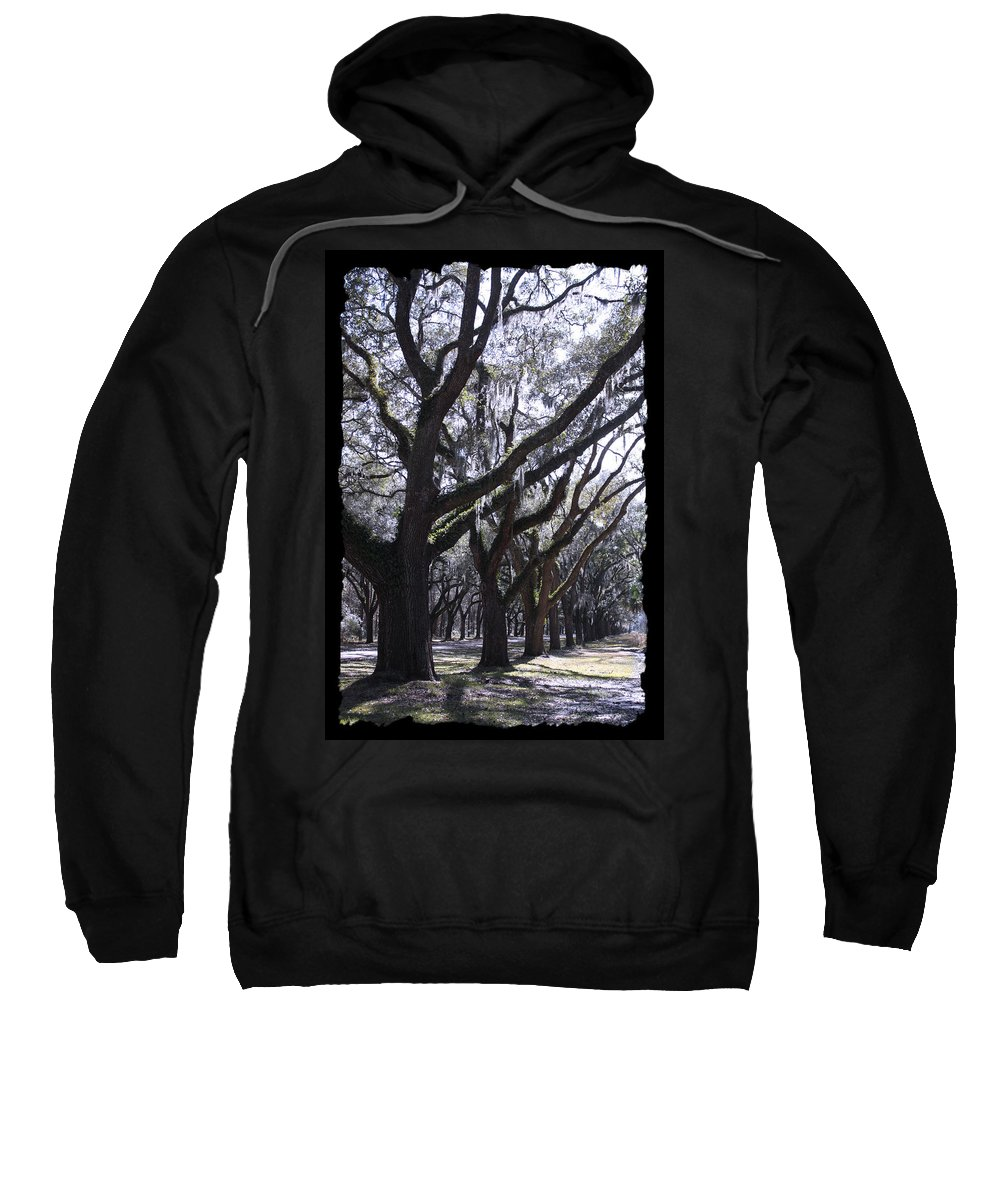 Souther Trees Sweatshirt featuring the photograph Glorious Live Oaks With Framing by Carol Groenen