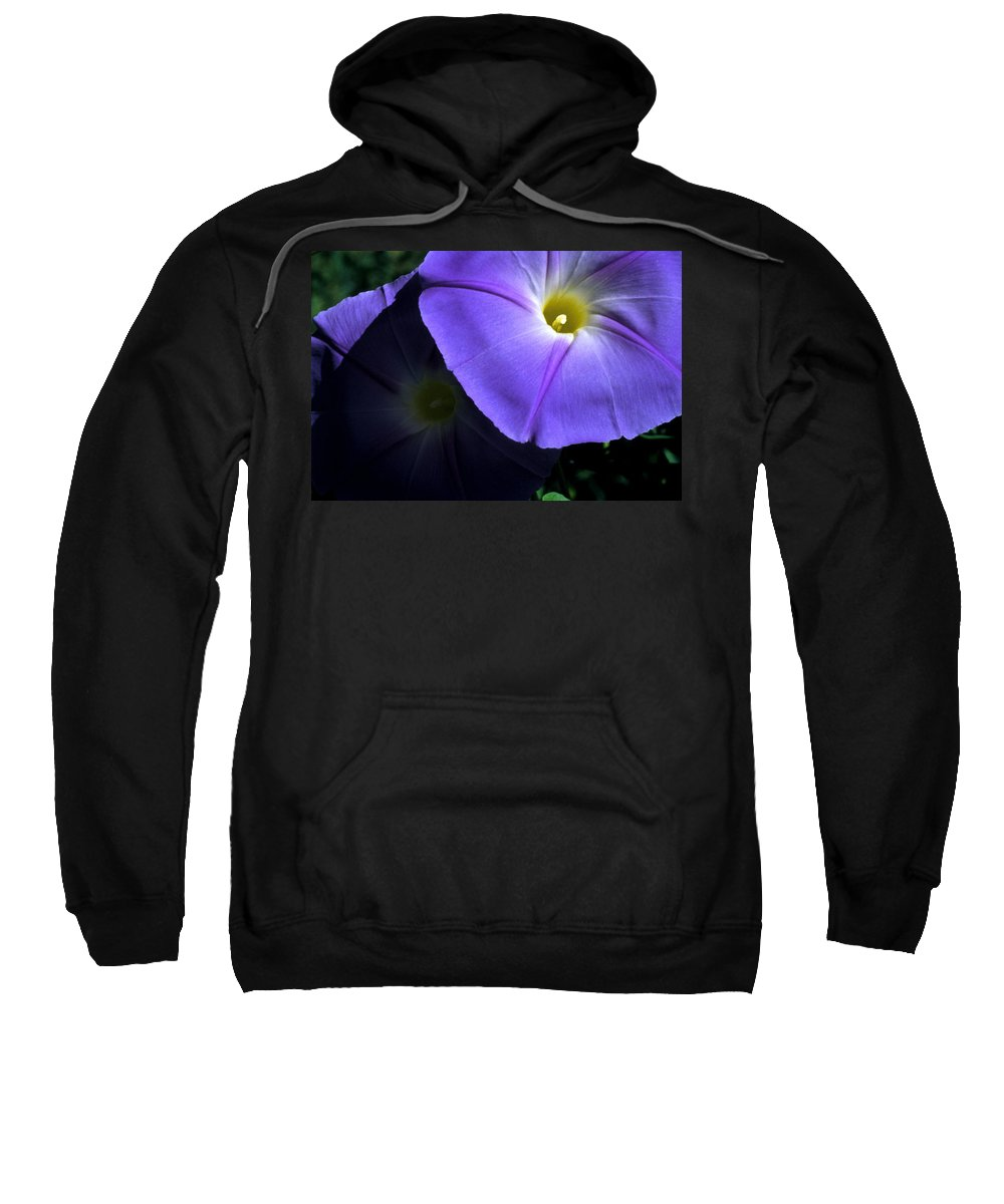 Morning Glory Sweatshirt featuring the photograph Glory In The Morning by Jerry McElroy