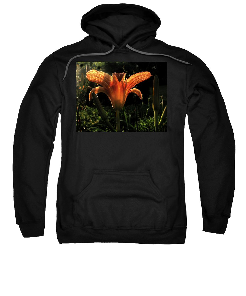 Lily Sweatshirt featuring the photograph Glowing Day Lily by Donna Brown
