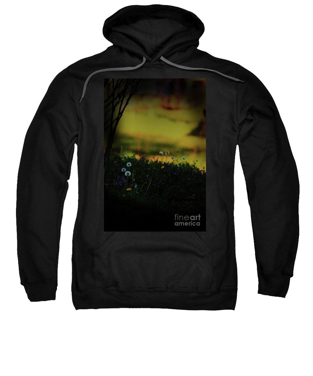 Nature Sweatshirt featuring the photograph Glowing by Kim Henderson