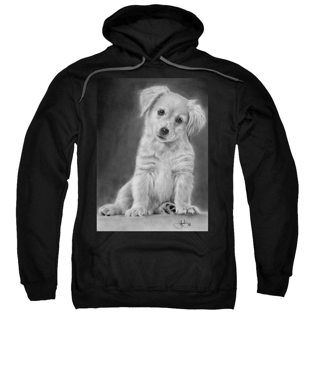 Golden Sweatshirt featuring the drawing Golden Retriever Puppy Drawing by John Harding