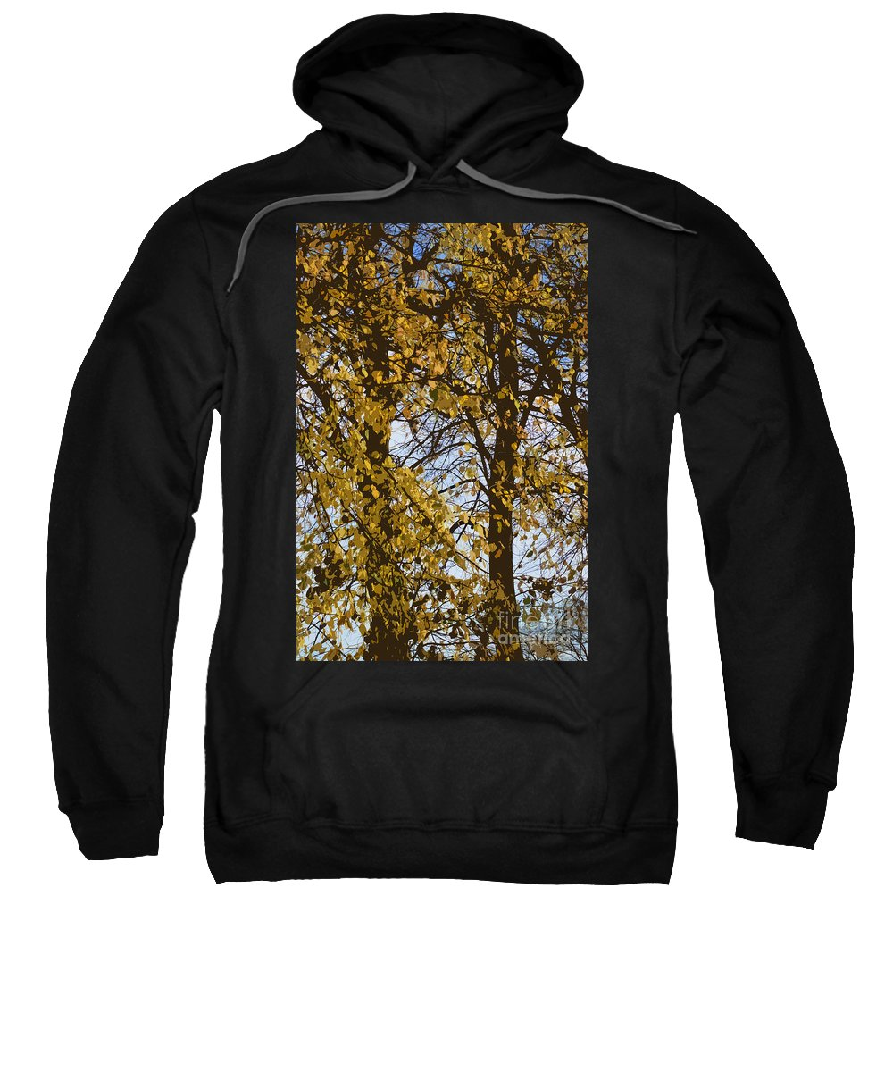 Autumn Sweatshirt featuring the photograph Golden Tree 2 by Carol Lynch