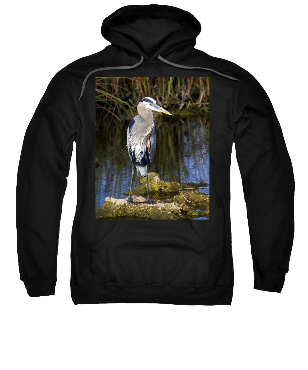 Great Blue Heron Sweatshirt featuring the photograph Great Blue by Marty Koch