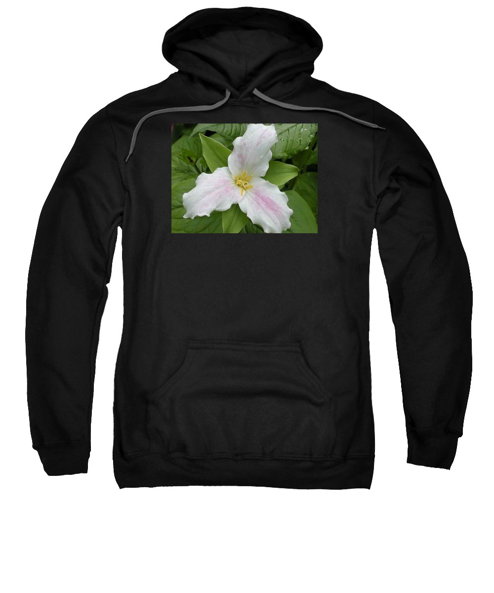 Trillium Sweatshirt featuring the photograph Great White Trillium by Nelson Strong