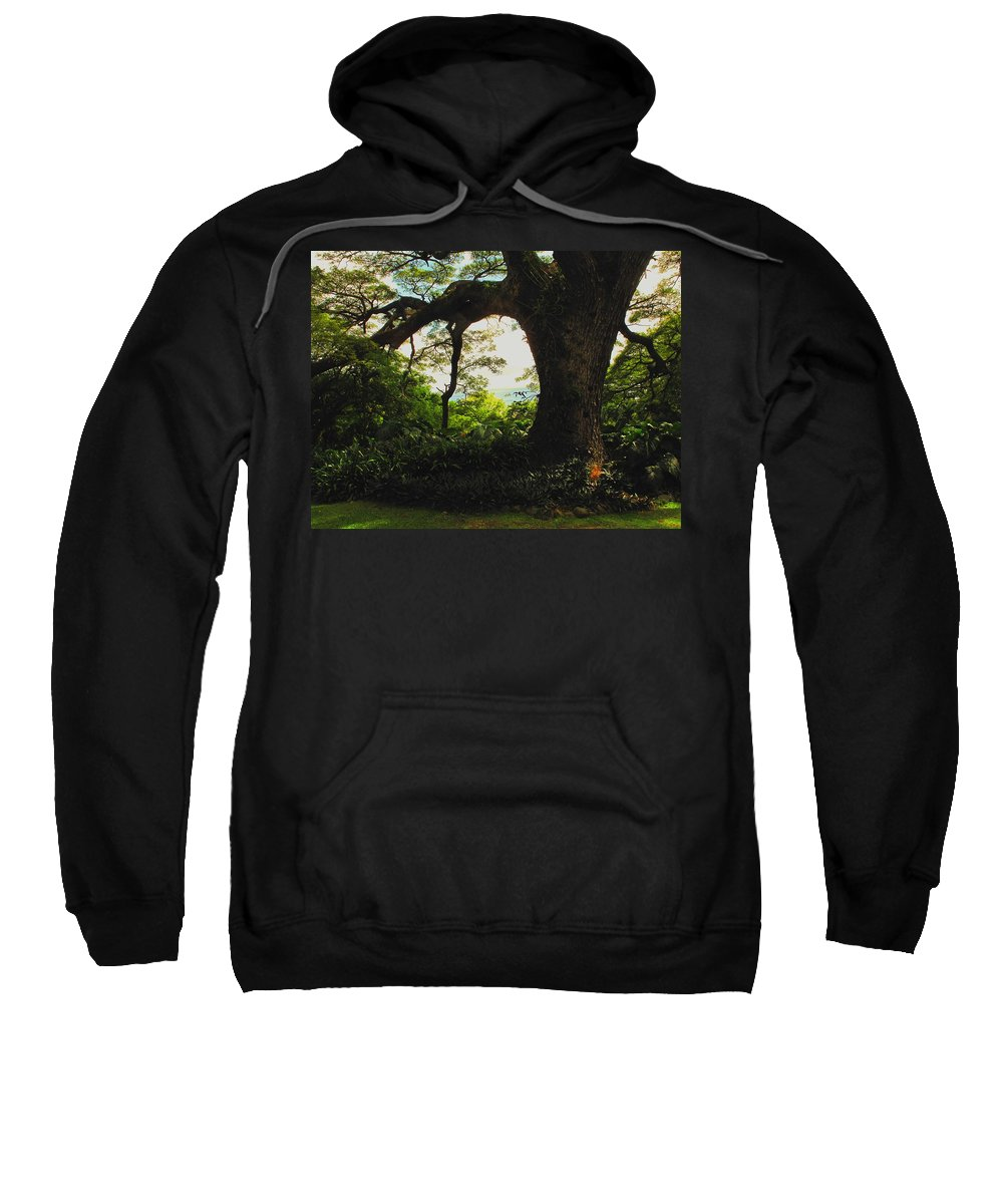 Tropical Sweatshirt featuring the photograph Green Giant by Ian MacDonald
