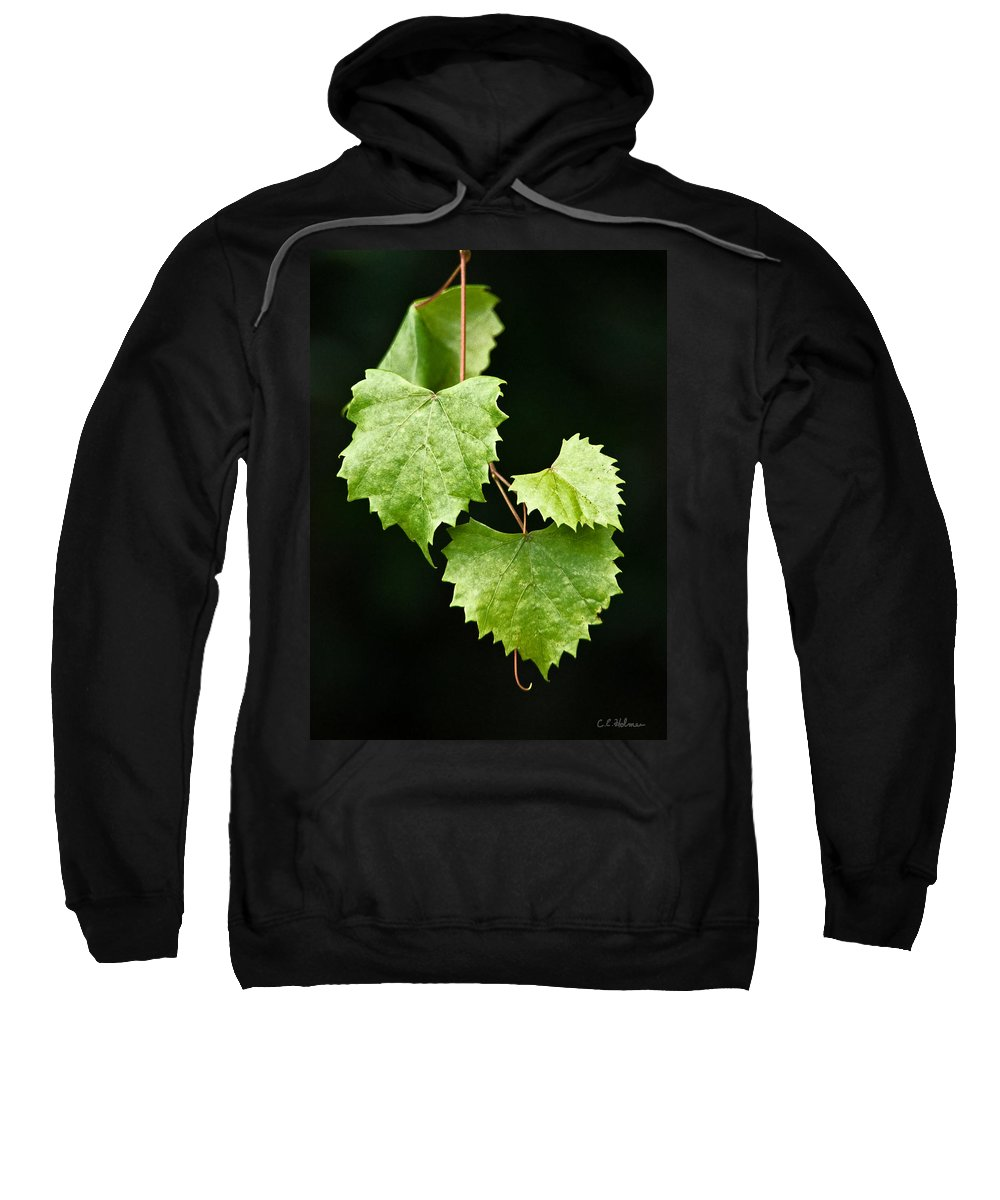 Flora Sweatshirt featuring the photograph Green Leaves by Christopher Holmes