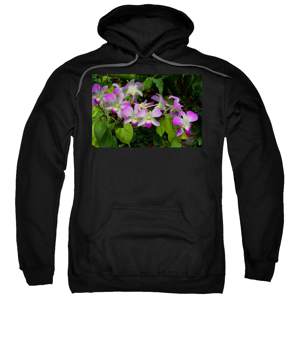 Orchid Sweatshirt featuring the photograph Green Leaves With Orchids by Laurie Paci