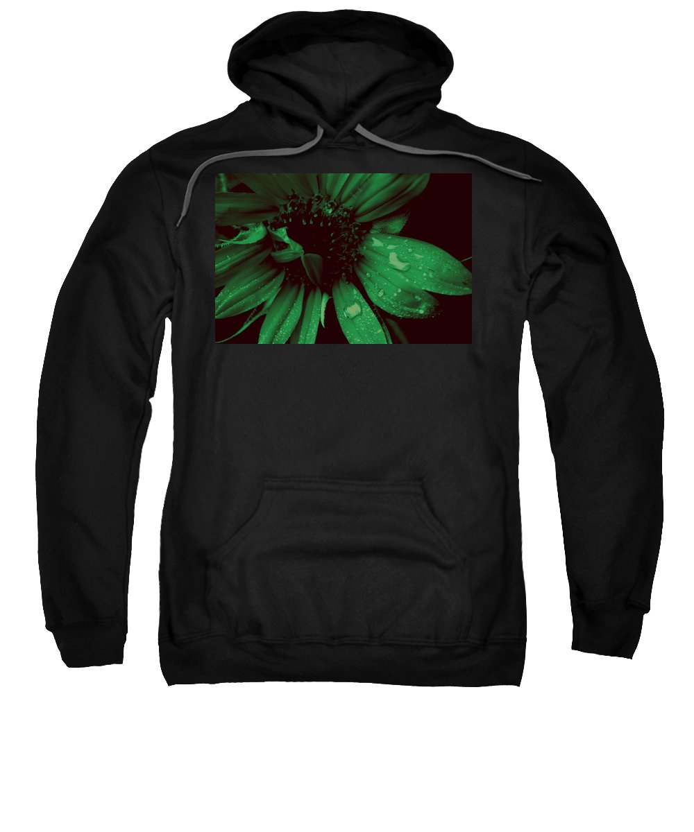 Green Sweatshirt featuring the photograph Green With Envy by Donna Bentley