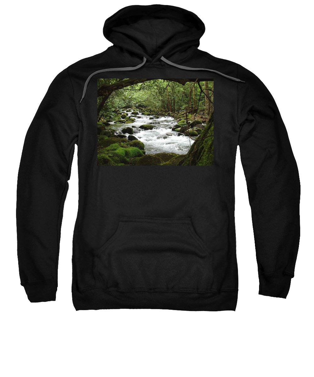 Smoky Mountains Sweatshirt featuring the photograph Greenbrier River Scene 2 by Nancy Mueller
