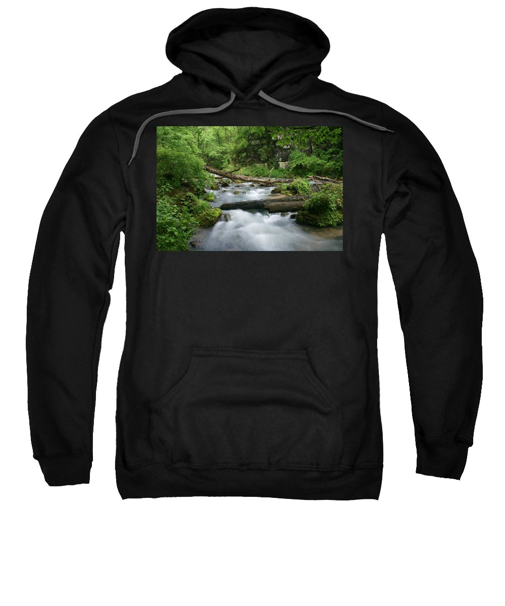 Greer Spring Sweatshirt featuring the photograph Greer Spring Branch 1 by Marty Koch