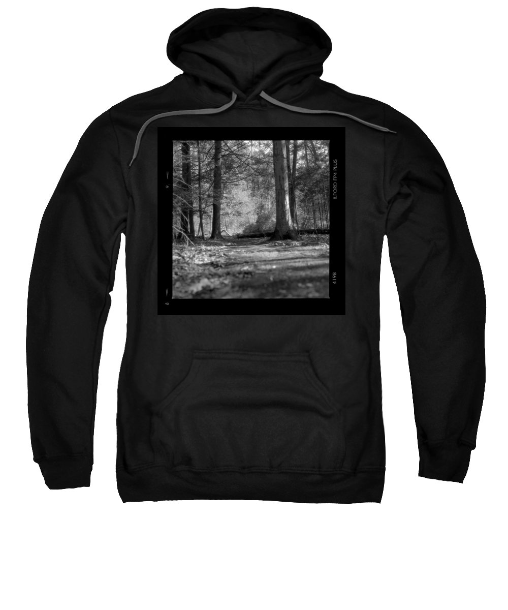Trees Sweatshirt featuring the photograph Ground Floor by Jean Macaluso
