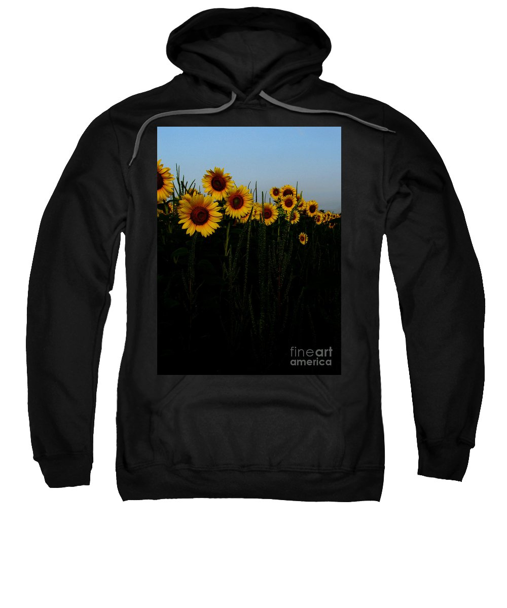 Sunflowers Sweatshirt featuring the photograph Guide Me by Amanda Barcon