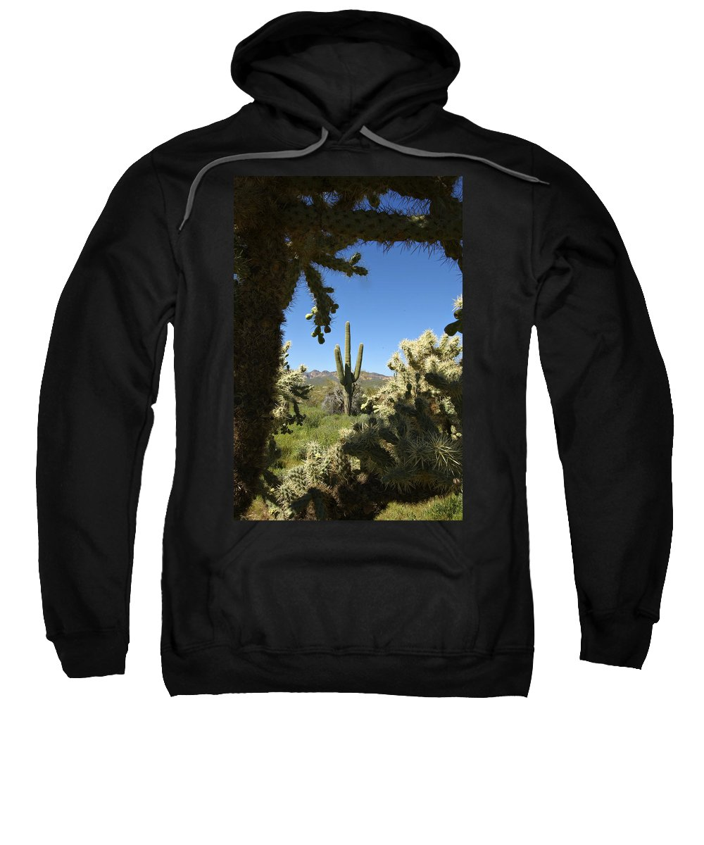 Saguaro Sweatshirt featuring the photograph Hands Up You're Surrounded by Jill Reger