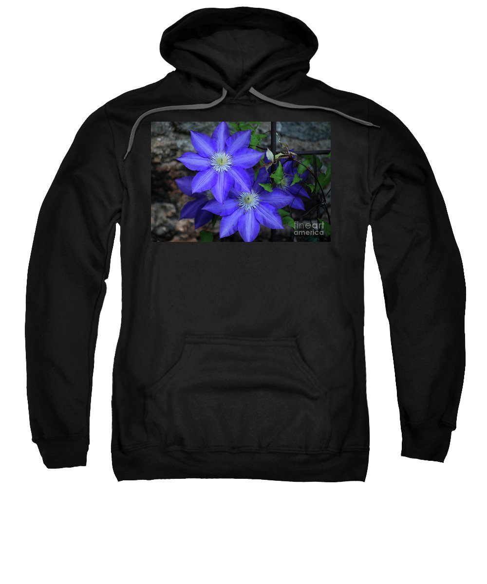 Clematis Sweatshirt featuring the photograph Happy To Be Here by Lori Tambakis
