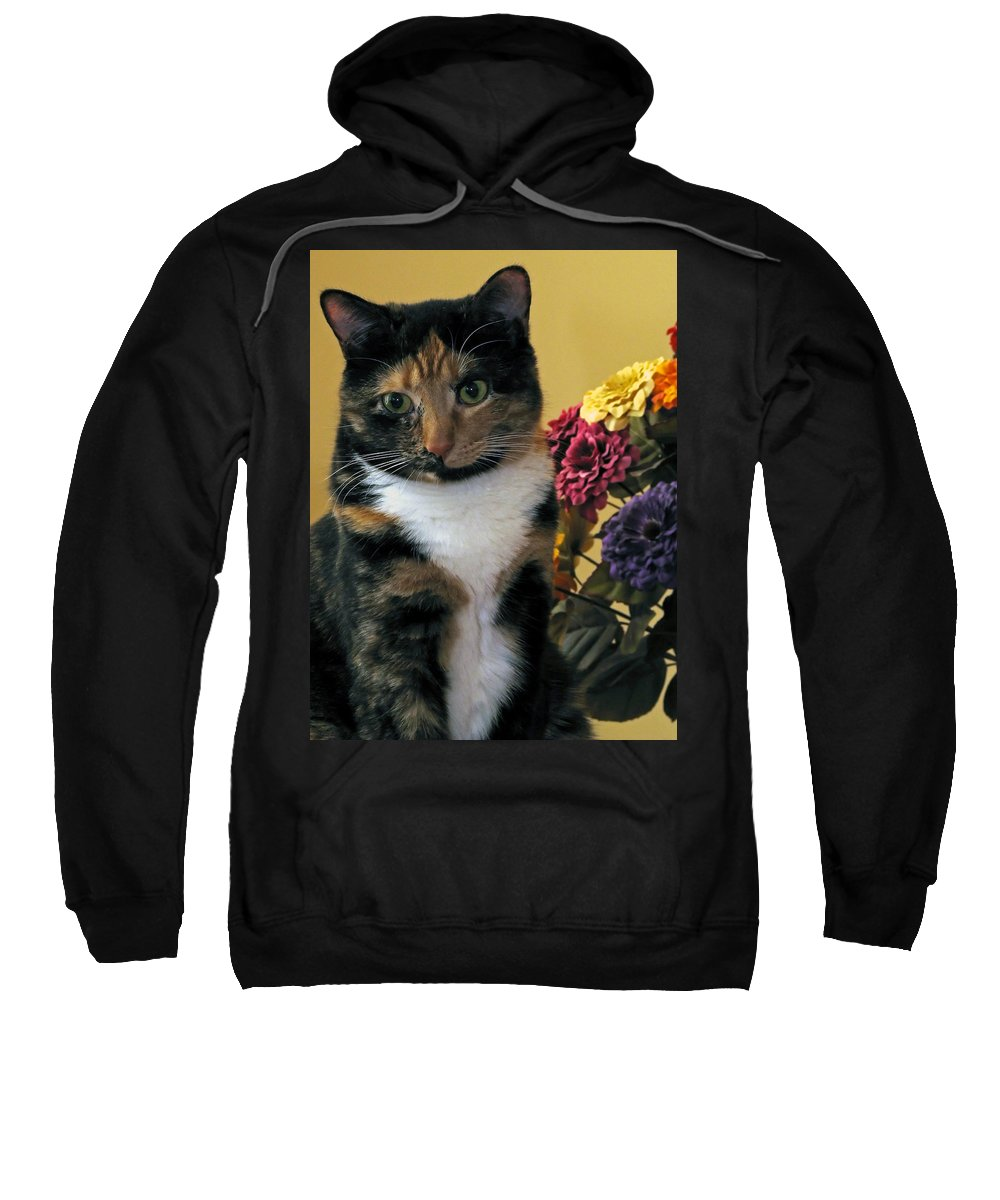 Animal Sweatshirt featuring the photograph Harmony by Gary Adkins
