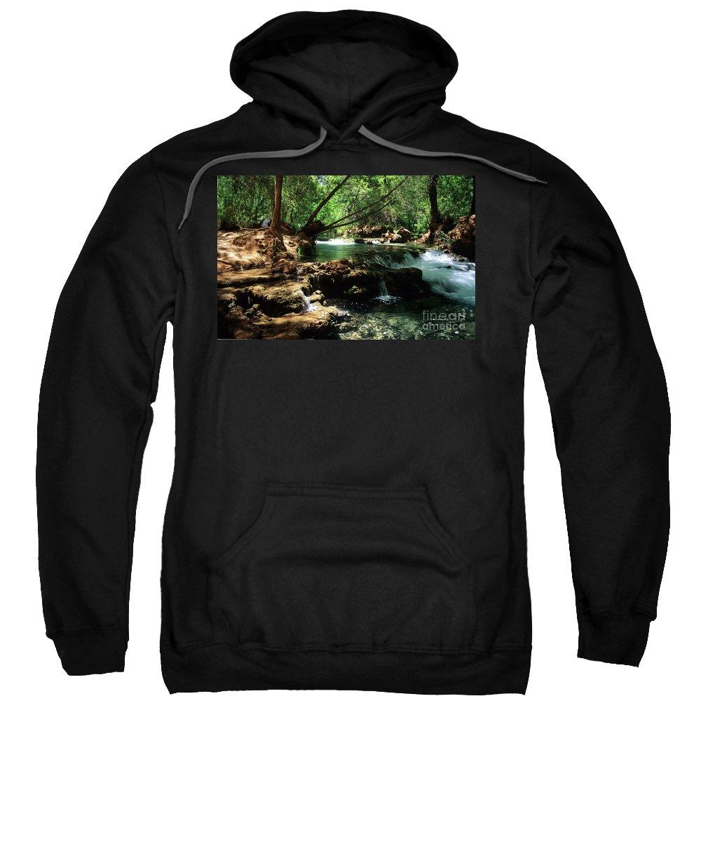 Havasupai Sweatshirt featuring the photograph Havasu Creek In Campground by Kathy McClure