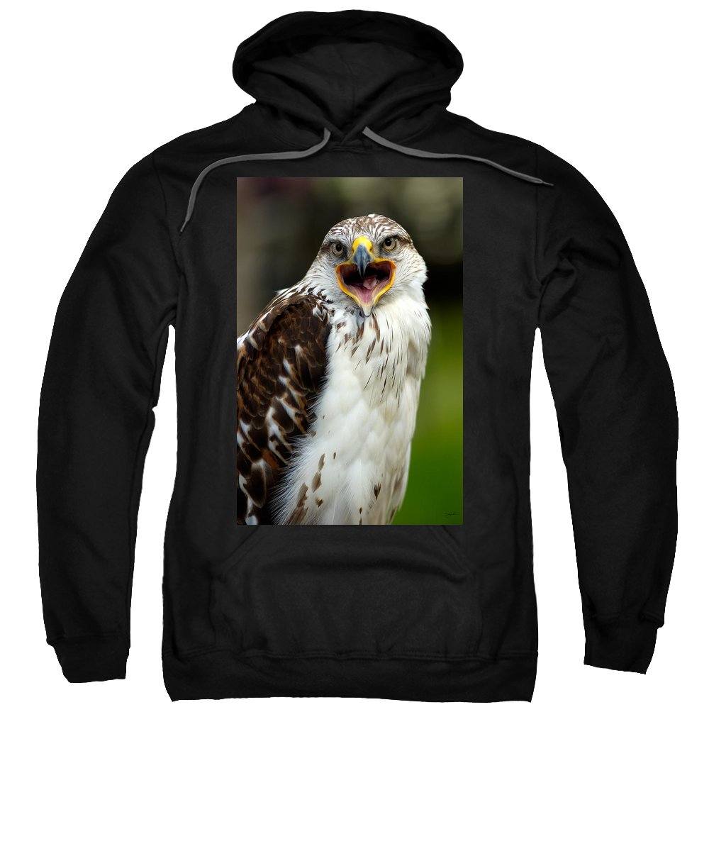 Hawk Sweatshirt featuring the photograph Hawk by Doug Gibbons
