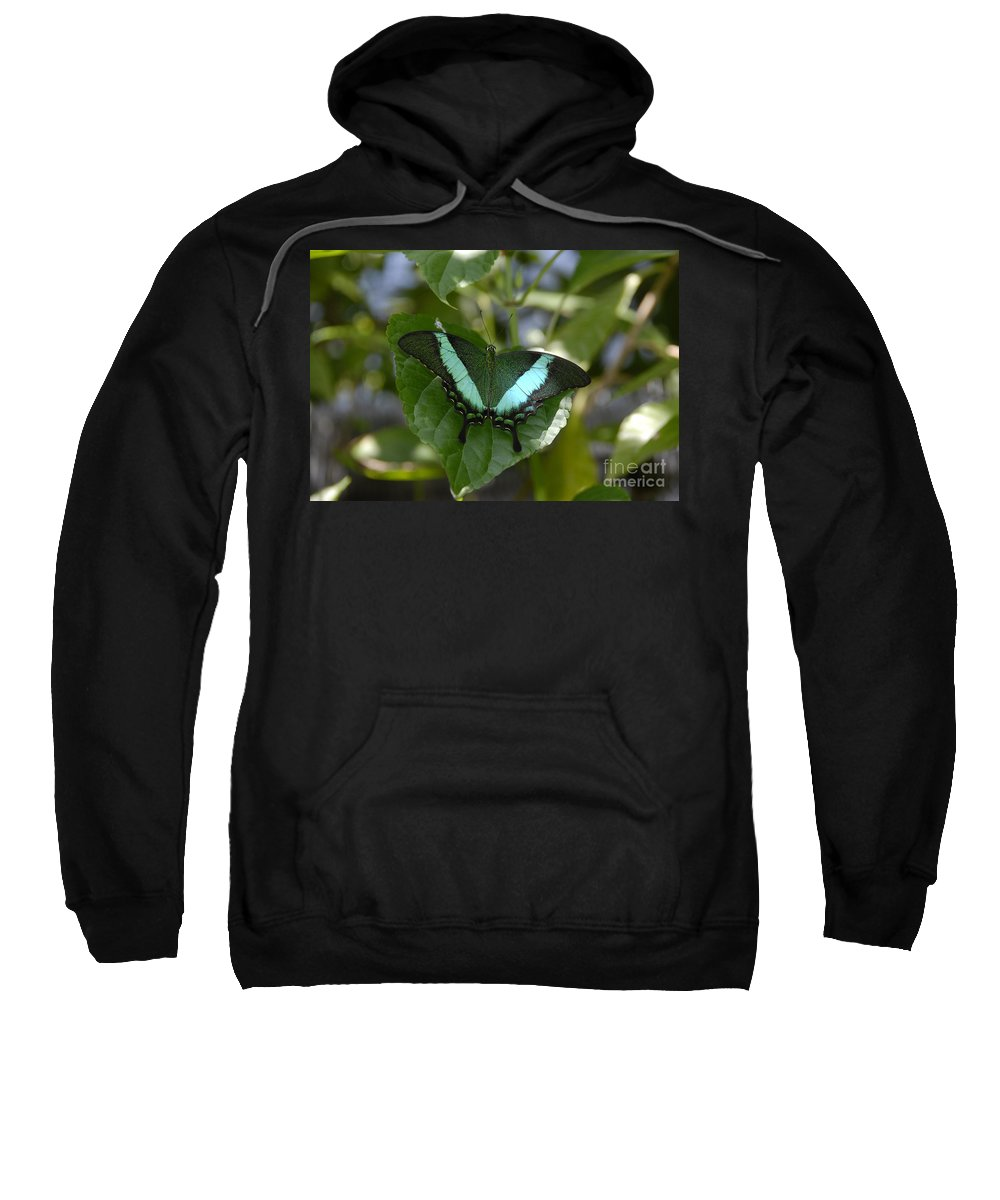 Butterfly Sweatshirt featuring the photograph Heart Leaf Butterfly by David Lee Thompson