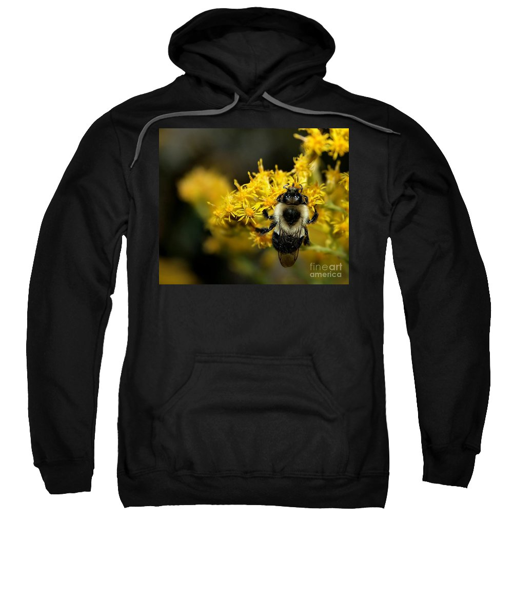 Bee Sweatshirt featuring the photograph Heart Of The Bee by Roger Becker