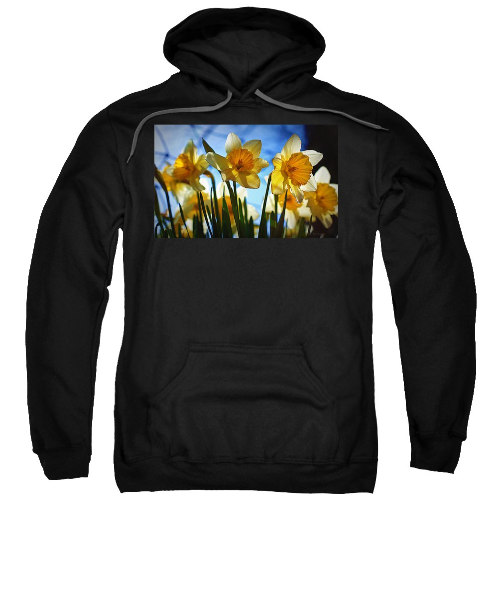 Flower Sweatshirt featuring the photograph Hello Spring by Cricket Hackmann