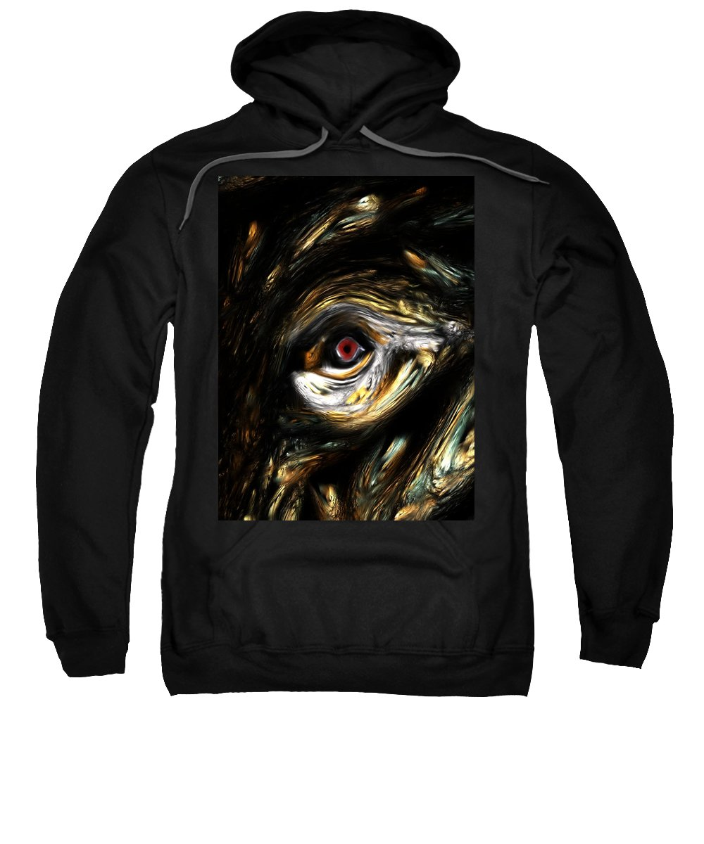 Abstract Digital Painting Sweatshirt featuring the digital art Here's Looking At You by David Lane