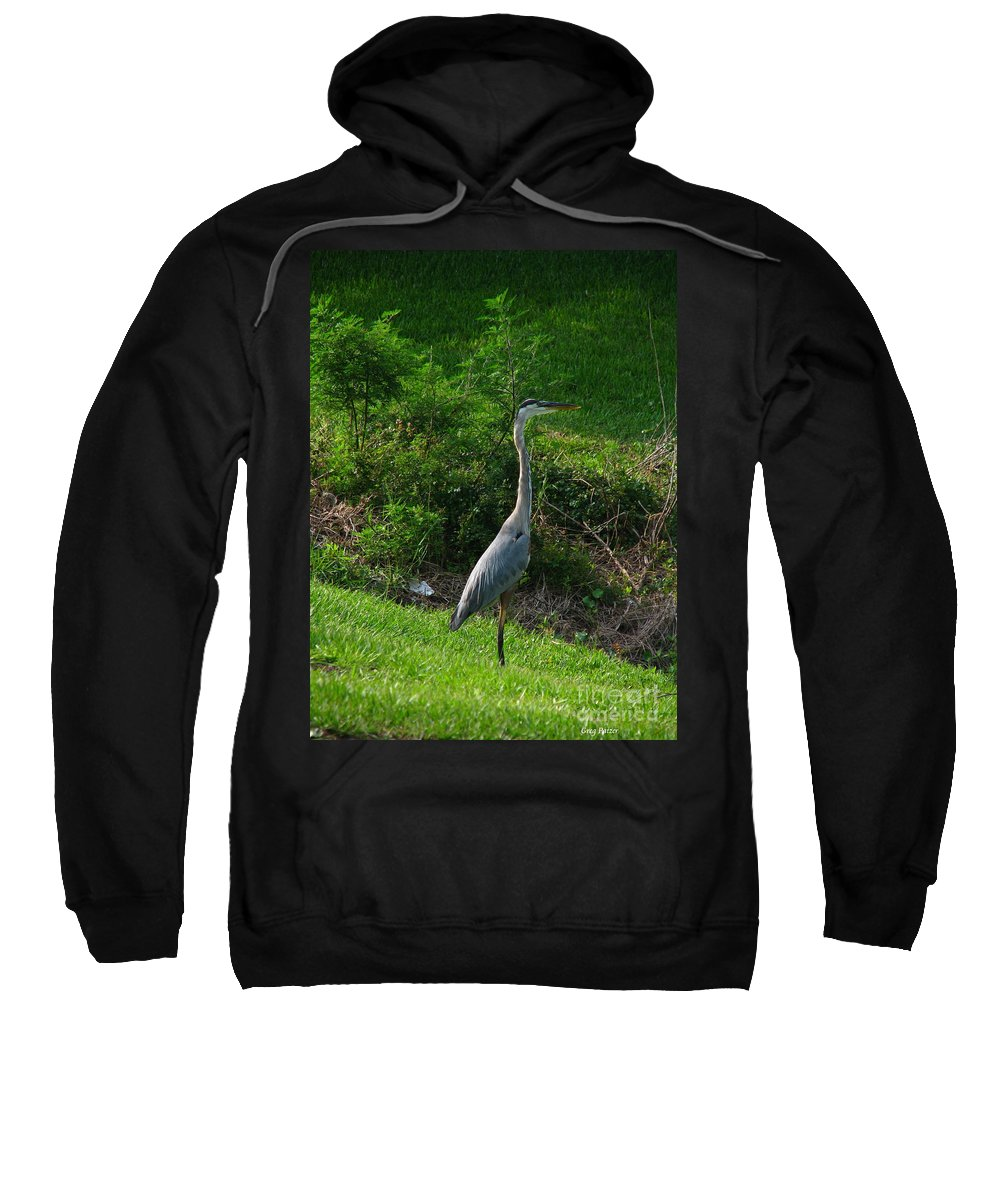 Patzer Sweatshirt featuring the photograph Heron Blue by Greg Patzer