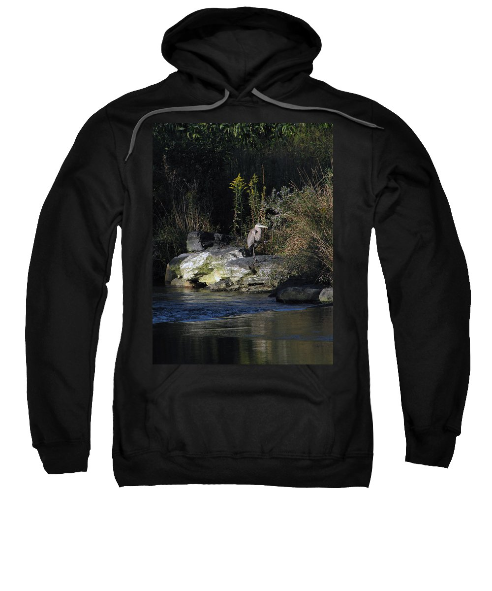 Heron Sweatshirt featuring the photograph Heron By A Stream by Gary Adkins
