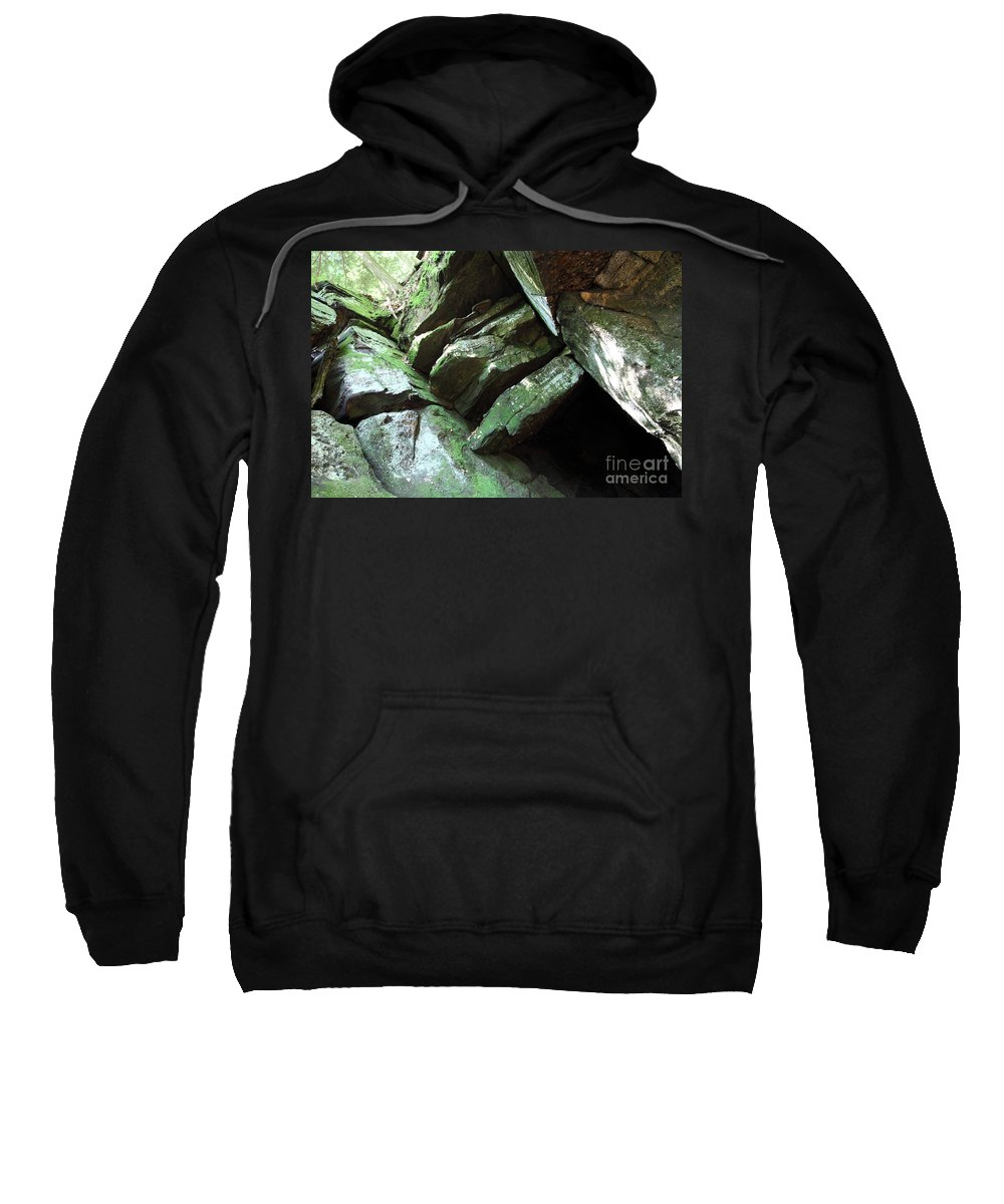 Tree Sweatshirt featuring the photograph Hi Tree by Amanda Barcon