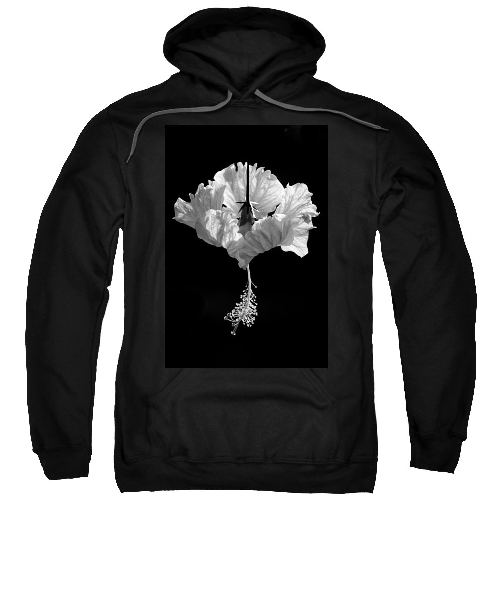 Black Sweatshirt featuring the photograph Hibiscus As Art 2 by Hitendra SINKAR